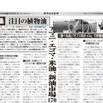 健康産業新聞164926植物油a