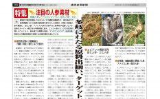 健康産業新聞163538人参